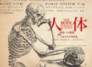 人体-神秘への挑戦.png