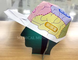 脳ぼうしブログ.jpg